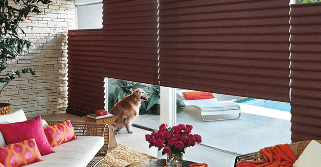 pet safe window coverings