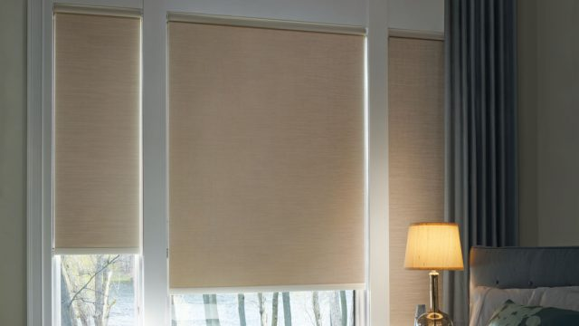 Des roller Blackout Shades