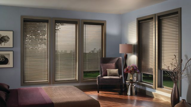 Natural Cadence Soft Blinds